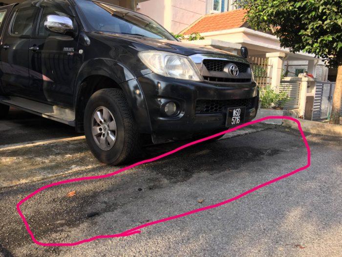 'Selepas Menggunakan 'Cat Repellent' Ini, Tiada Lagi Masalah Bau Najis Kucing di Depan Rumah' 2