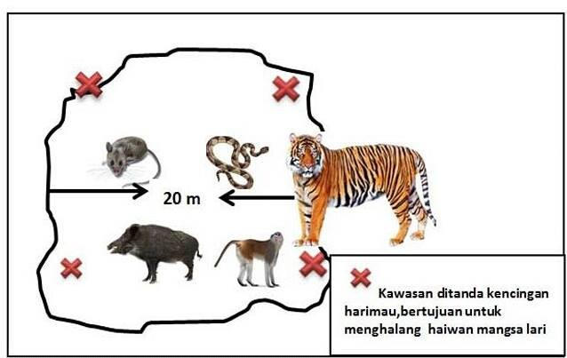 'Kencing Harimau', Petua Untuk Elakkan Tanaman Diganggu Binatang Liar 3