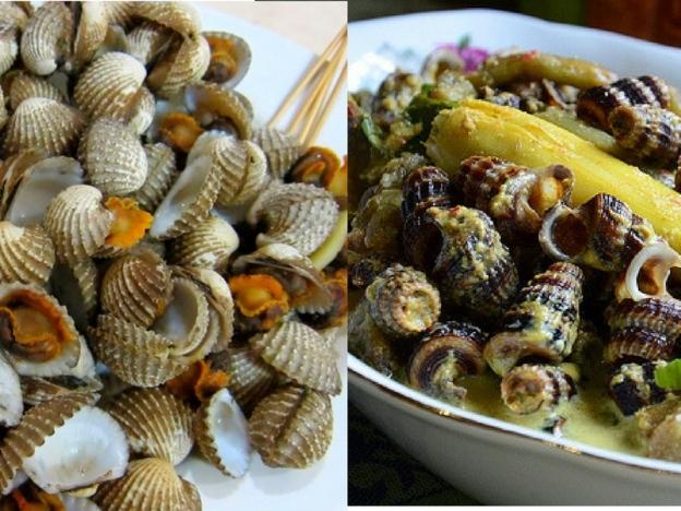 bersihkan kerang, bersihkan siput sedut, cara basuh siput sedut, cara basuh kerang, elakkan keracunan makanan laut