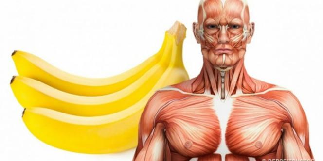 diet pisang, diet sihat, diet buahan, diet makan pisang, diet tanpa usaha keras