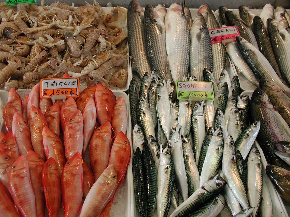 petua tentang ikan, resepi masakan ikan ,cara siang ikan, cara masak ikan, cara pilih ikan, cara pilih ikan segar, ikan laut, ikan sungai