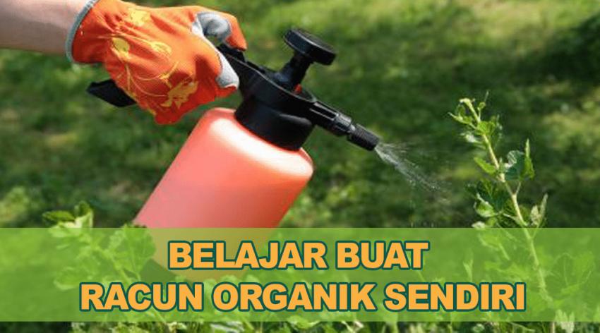 racun pokok, racun tanaman, racun organik, cara buat racun organik, resepi racun organik
