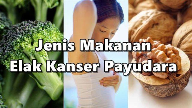 Inilah 5 Jenis Makanan Elak Kanser Payudara Orang Perempuan Kena Amalkan