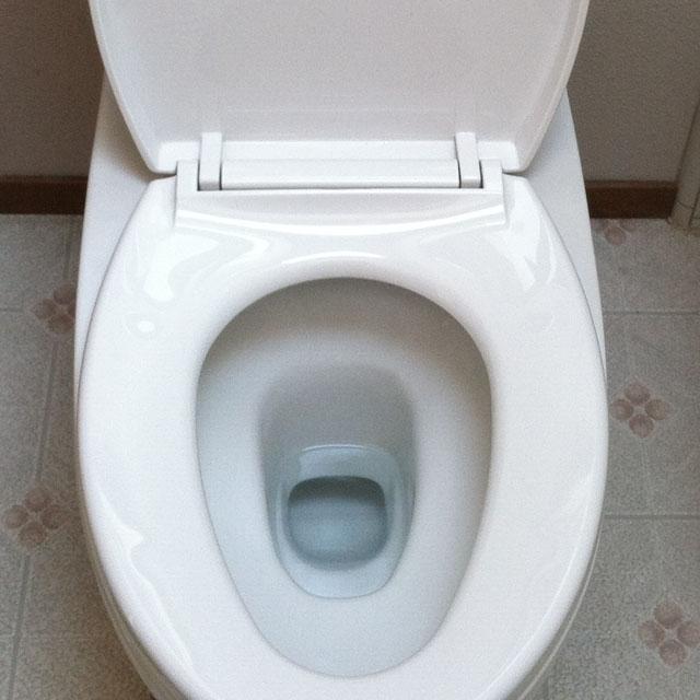 DIY Toilet Bomb