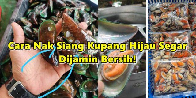 Cara Nak Siang Kupang Hijau Segar, Paling Penting Kena Buang Rambutnya!